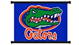 Florida Gators NCAA Fabric Wall Scroll Poster (32'' x 24'') Inches