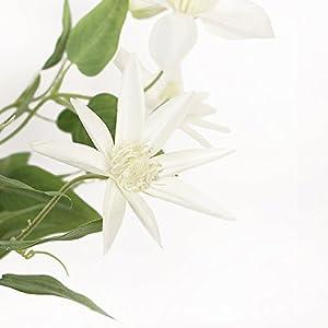 Li Hua Cat FrenchHigh-endViolet/WhiteClematisartificialflower/flowerarrangementfortable,desk,room,shop,photography,wedding,DIY,etc (White) 1