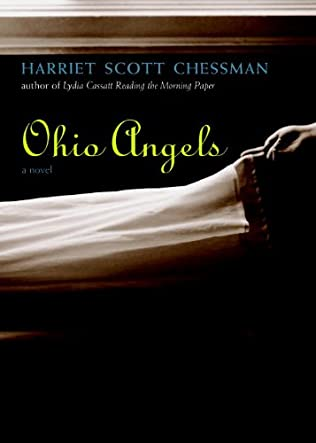 book cover of Ohio Angels