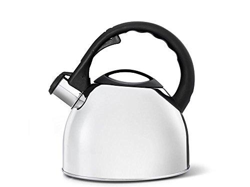 bredemeijer Universal Teakettle, 2.5-Liter, High Gloss Metallic with Black Handle