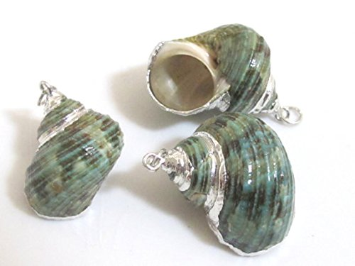 - 1 Pendant - Silver plated green turbo spiral shell pendant - 1 piece - SP040
