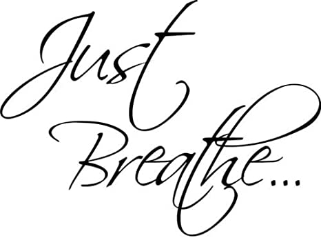Wellness Inspiration Yoga Meditation Car Just Breathe Vinyl Sticker Decal V94