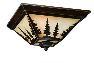 "Vaxcel CC55514BBZ Yosemite Flush Mount, 14"", Burnished Bronze Finish"