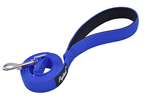Blue Dog Flexible Leash - 4