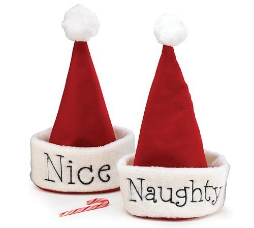 Santa Christmas Hat with Hand Stitched Naughty Or Nice Festive Holiday Hat (Hat Christmas Tree Santa)