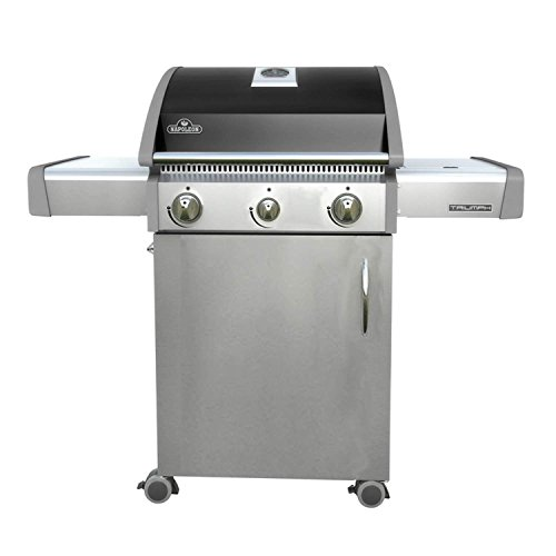Napoleon T325SBNK Triumph Natural Gas  with 2 Burners, Black and Stainless Steel (Steel Covers Patio)