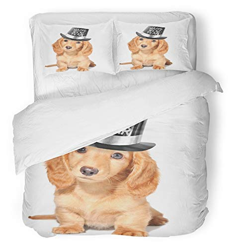 (Emvency 3 Piece Duvet Cover Set Brushed Microfiber Fabric Breathable Brown Dog Happy New Years Puppy Eve Resolution Pet Hat Golden Party Pup Bedding Set with 2 Pillow Covers Twin Size)
