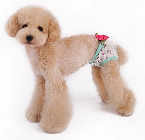 Enjoying Puppy Panties Dog Underwear Female With Flower Light Green -Small