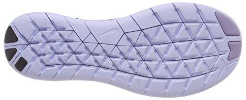 Running Violet RN Femme Violet Free Poudre Pâle WMNS 2017 Hortensias Sec Nike de Flyknit Compétition Plus 500 Raisin Chaussures Violet Foncé 0wSTn
