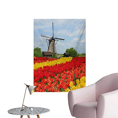 - Anzhutwelve Windmill Wallpaper Rows of Colorful Tulips in Northern Europe Rural Garden Bed Picturesque SummerMulticolor W20 xL28 Poster Paper