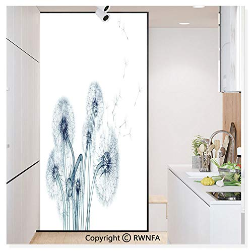 RWN Film Removable Static Decorative Privacy Window Films Unusual Image of Dandelions on Simple Background Uv Style Negative of Nature Art for Glass (17.7In. by 78.7In),Teal White