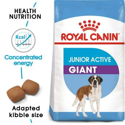Dog Food Royal Canin Giant Puppy JuniorActive for young dogs of giant dog breeds with high activity levels, suitable from 8 to 18 (or 24) months Economy Pack  2 x 15kg