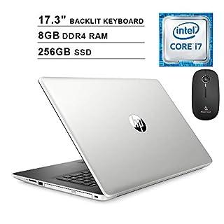 2020 HP Pavilion 17.3 Inch Laptop (Intel 4-Core i7-8565U up to 4.6 GHz, 8GB DDR4 RAM, 256GB SSD, Backlit KB, Bluetooth, DVD, Windows 10) (Silver) + NexiGo Wireless Mouse Bundle
