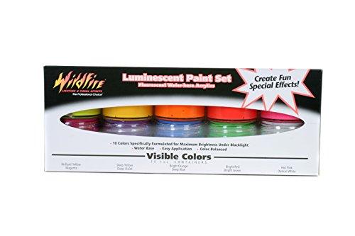 Wildfire Artist Kit Black Light Paint, 1 Ounce Bottles, (Pack of 10)