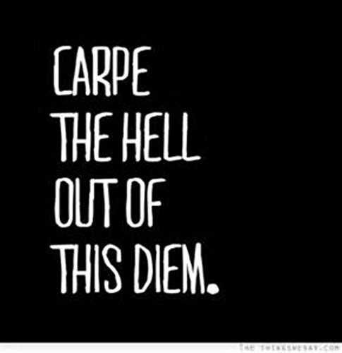 Carpe the Hell Out of This Diem Decal | for car, wall, computer, laptop etc...| 5.75 X 3.75 In | KCD212