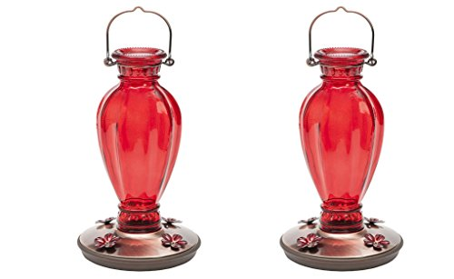 Perky Pet 8133-2 Daisy Vase Vintage TBqCxt, 2 Glass Hummingbird Feeder by Perky-Pet