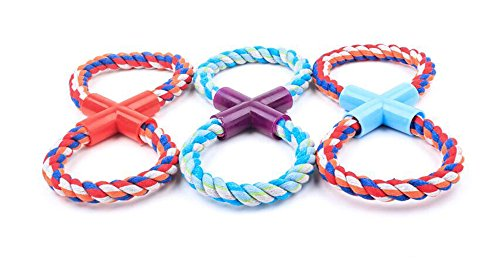 LPET Pet Round Eight Shape Chew Rope Toys 3Pack Teeth Cleanning Bitting Playing with Plastic Pipe for Small Dogs