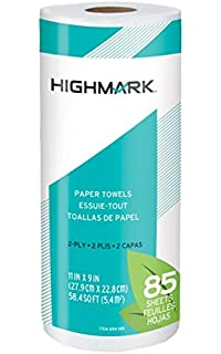 Highmark Brand 100% Recycled 2-Ply Paper Towels, 11
