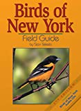 Birds of New York Field Guide (Bird Identification Guides)