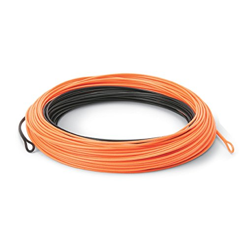 競売 CortlandフライラインクイックDescent 200GR Precision 24 ' 200GR 6 24 6/7/8WT/7/8WT B01N7FARQT, フソウチョウ:d192dbb5 --- a0267596.xsph.ru