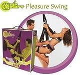 Whip Smart Pleasure Swing, Wild Cheetah
