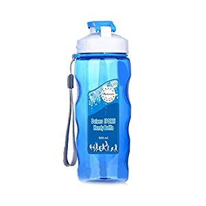 Daixers Sports Water Bottle With Leak Proof Flip Top Lid 500ml (Blue)