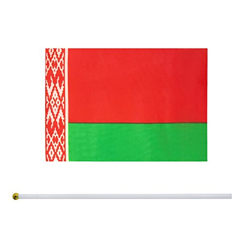 Flag Belarus - Kind Girl Hand Held Belarus Flag Belarusians Flag Stick Flag Small Mini Flag 50 Pack Round Top National Country Flags,Party Decorations Supplies for Parades,World Cup,Sports Events,Celebration