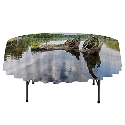 DouglasHill Driftwood Printed Round Tablecloth Remains of a White Cedar Tree Trunk in The Lake and The Sky Digital Image Desktop Protection pad D51 Inch Green Pale Grey ()
