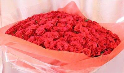 [ビズフラワー]驚きのバラ300本の花束 B01KWVKEDE