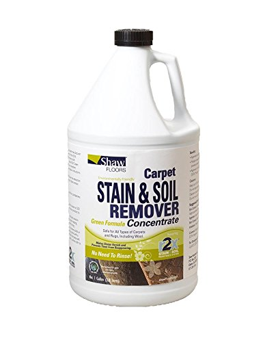 shaw-floors-r2x-carpet-stain-and-soil-remover-green-formula-concentrate-refill-1-gallon