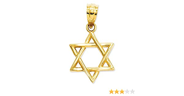 0.79 in x 0.47 in 14k Gold Polished Star of David Pendant
