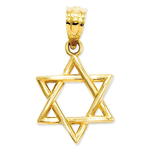 14k Yellow Gold Jewish Star of David Pendant ()