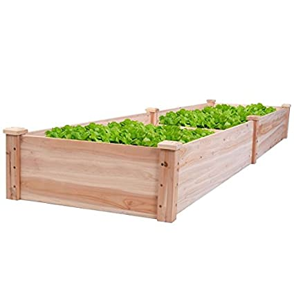 New 8 X 2 Wood Garden Raised Bed Vegetables Planter Kit Elevated Box Flower Gardening Grow Plant Herb Cedar Outdoor Patio Backyard Pots Wooden