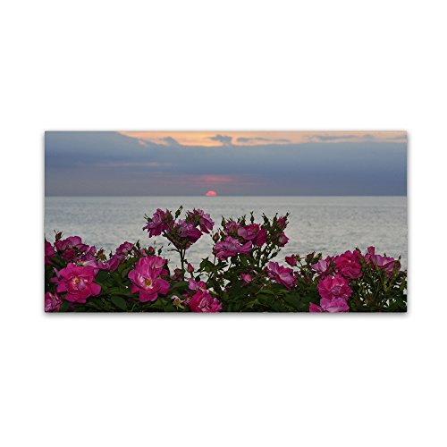 Sunset Roses Artwork by Kurt Shaffer, 24 by 47-Inch Canvas Wall ()