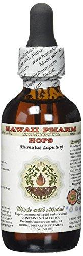 Hops Alcohol-FREE Liquid Extract, Organic Hops (Humulus Lupulus) Dried Flower Glycerite Hawaii Pharm Natural Herbal Supplement 2 oz