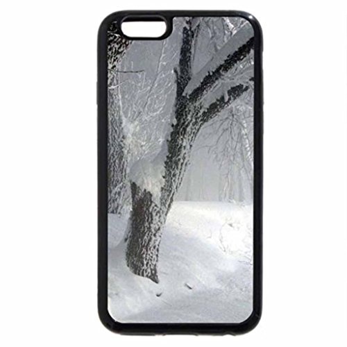 iPhone 6S / iPhone 6 Case (Black) winter forest