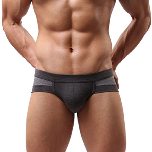Men's Underwear,Neartime Mens Low Waist Boxers Briefs Men Underpants Soft Shorts (L, Gray)