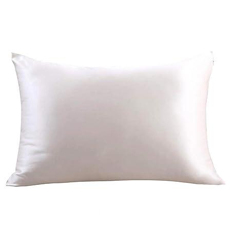 Zimasilk 100 Percents Mulberry Silk Pillowcase Hair Skin,Both Side 19 Momme Silk, 1pc (Queen 20''x30'', Ivory) by Zimasilk