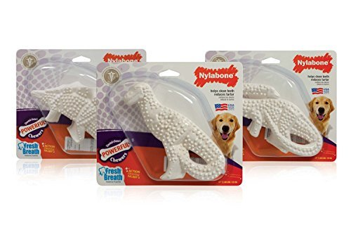3 Pack Nylabone Durable Dental Dinosaur Chew Toy (Dinosaur Varies)