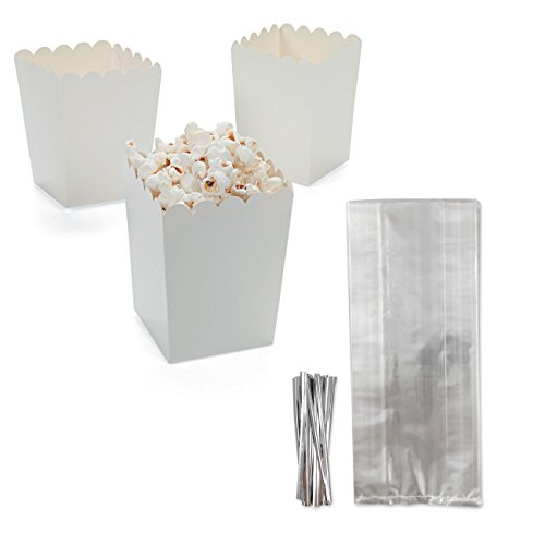 Candlewood Imports Mini White Paper Popcorn Container Boxes, Set of 24, 2.5 in x 2.5 in x 4 in, Bundled with 24 Tall Clear Gusseted Cellophane Goody Treat Bags with Silver Metallic Twist Ties, 4 in x 2 in x 9.5 in by Candlewood Imports