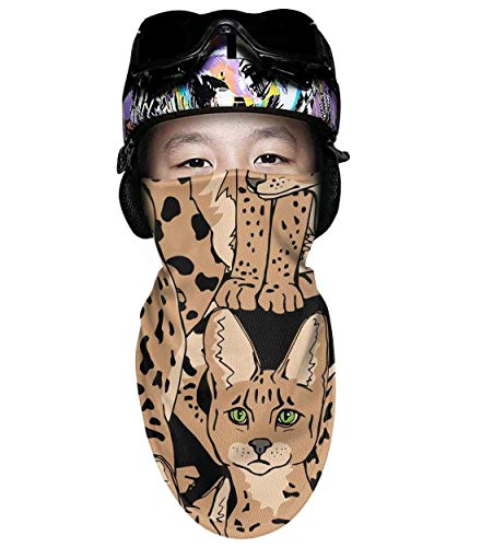 Beige Graceful Wild Cats African Boys Girls Windproof Ski Mask Multifunctional Scarf Outdoor Balaclava Face Mask (Wildcat Ski)