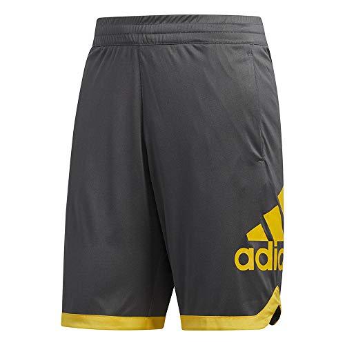 adidas Men's 36878 Sport Badge of Sport Shorts, Grey, X-Large ()