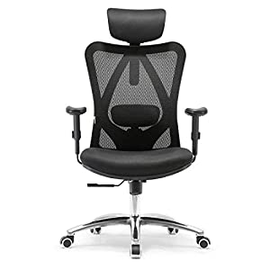 SIHOO Ergonomic Home Office Chair, Adjustable Headrest and Lumbar Support,High Back Executive Computer Chair(Black)