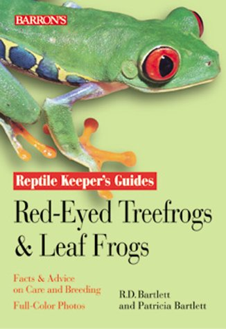 Red Eyed Tree Frog Care - 3