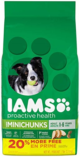 IAMS PROACTIVE HEALTH Adult MiniChunks Dry Dog Food 5.7 Pounds