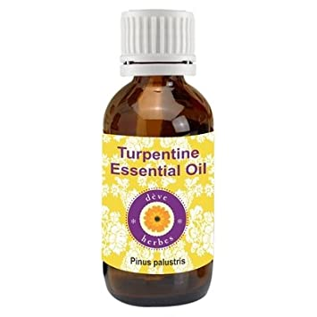 Deve Herbes Pure Turpentine Essential Oil (Pinus palustris) 100% Natural  Therapeutic Grade Steam