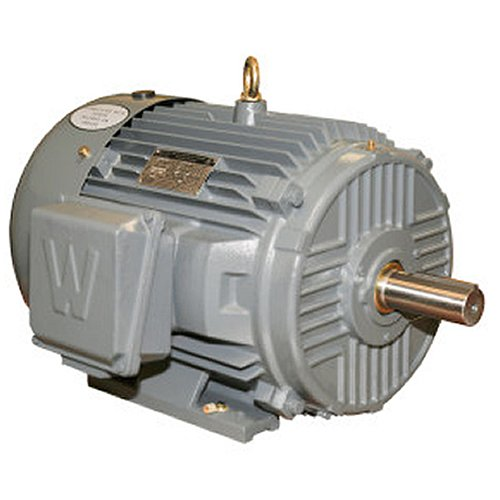 (Worldwide Electric EP1.5-12-182T Worldwide Epic Plus Severe Duty Motors Three-Phase - TEFC Enclosure - Rigid Base, 1.5 hp, 1200 RPM, 182T Frame, 2Amps)