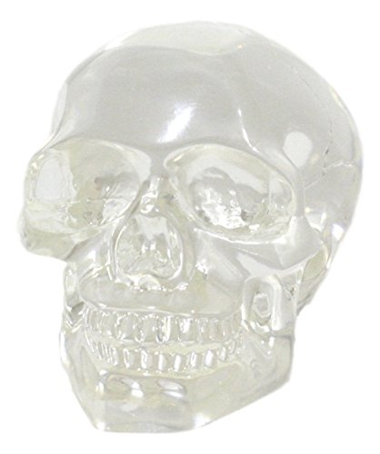 Ebros Small Clear Translucent Witching Hour Gazing Skull Statue 3.5