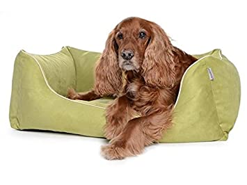Cama para perros, perro Sofá worldcollection antelina/Velour en Kiwi 5 Tamaños, impermeable, antimanchas, ortopédica, Memory foam: Amazon.es: Productos para ...