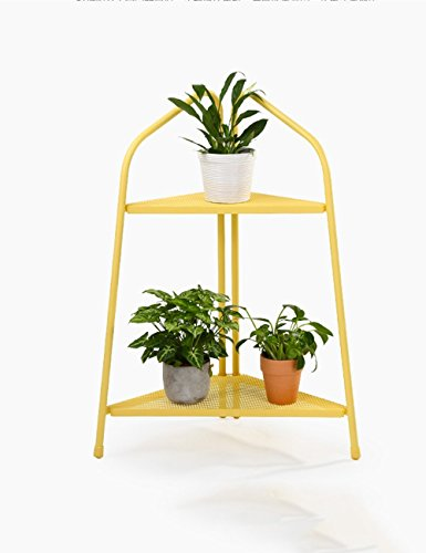 HOMEE Flower Rack Metal Iron Net Simple Fashion Living Room Flower Rack Rack Two Shelf Balcony Bonsai Frame --Home Environment Decorations,1 by HOMEE